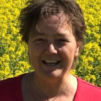 Single Frau Sucht Mann Horgen, seitensprung - Free Hoster